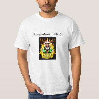 Revelations 1:14-15 (2) T-Shirt