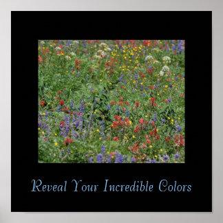Revele sus colores increíbles impresiones