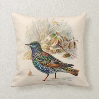 Reversible Vintage Birds Nature Wildlife No. 2