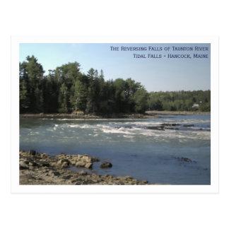 Reversing Falls of Taunton River Postcard