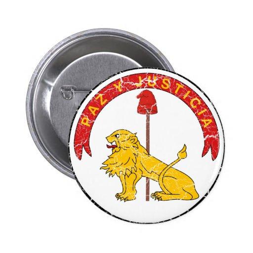Revés del escudo de armas de Paraguay Pins