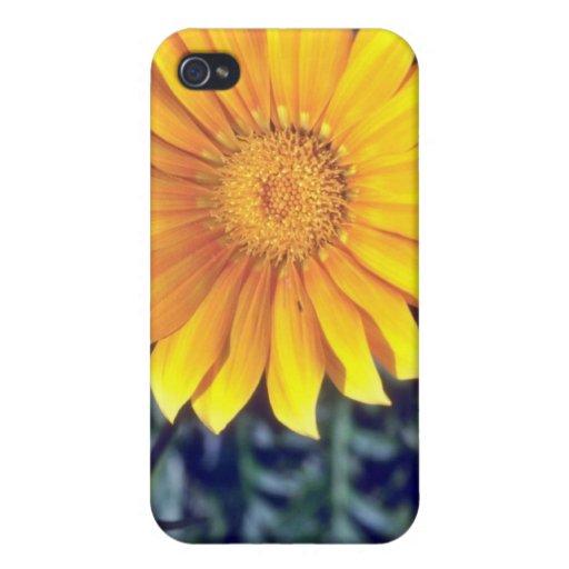 revestimiento amarillo las flores del sol iPhone 4/4S carcasas