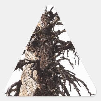 Revestimiento esquelético del árbol pegatina triangular