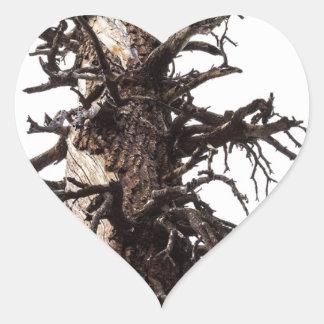 Revestimiento esquelético del árbol pegatina en forma de corazón