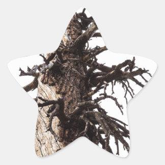 Revestimiento esquelético del árbol pegatina en forma de estrella