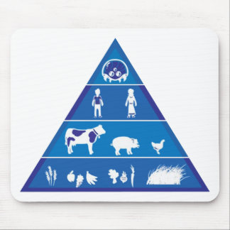 Revised Food Chain Mouse Pad