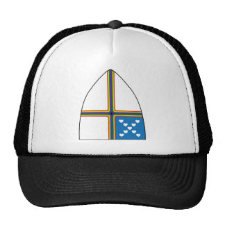 revised shield trucker hat