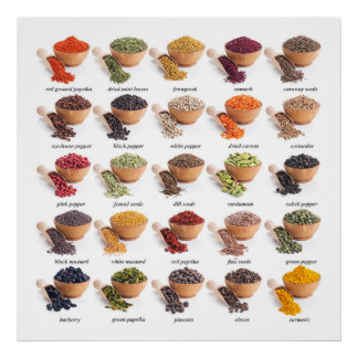 Revised Spice Chart Kitchen / Business Poster