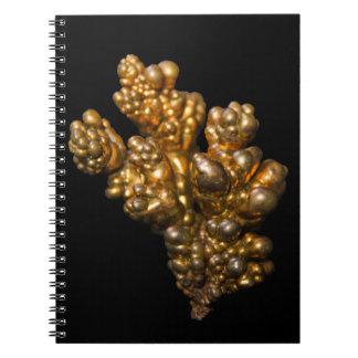 Revista un cuaderno con cobre espiral mineral colo
