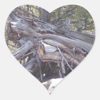 Revoltijo de la madera del envejecimiento pegatina en forma de corazón