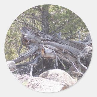 Revoltijo de la madera del envejecimiento pegatina redonda