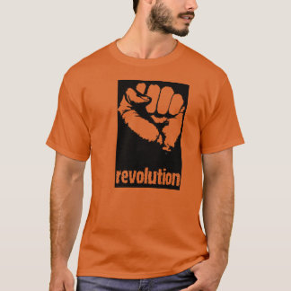 Revolución Playera