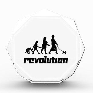 Revolution Award