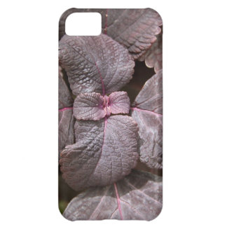 Rex Bagonia Case-Mate iPhone 5 Barely There Univer