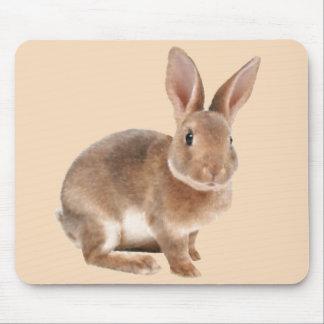 Rex Rabbit Mouse Pad