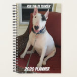 "Rex The TV Terrier 2020 Planner<br><div class=""desc"">A great way to keep track of your days,  with a happy ,  smiling Rex</div>"