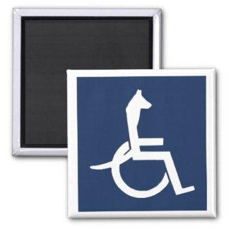 Rex Wheelchair Square Magnet