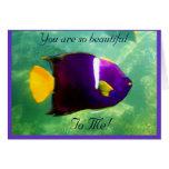 Rey Angelfish Tarjeta De Felicitación