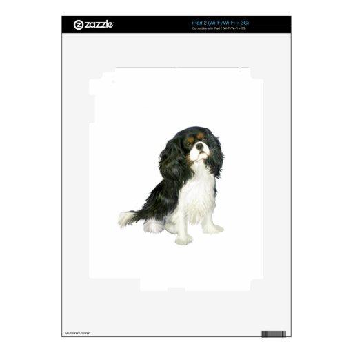 Rey arrogante Charles - tri coloreada Calcomanía Para iPad 2