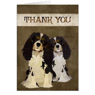 Rey arrogante Dogs Thank You Card Tarjetón