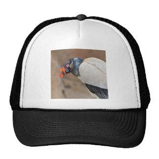 Rey buitre gorras de camionero