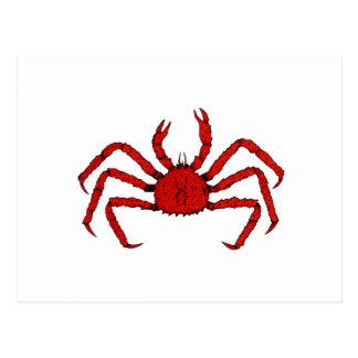 Rey cangrejo rojo (ejemplo de color) tarjeta postal