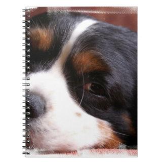 Rey Charles Cavalier Notebook