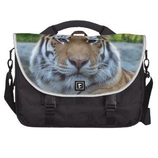 Rey Confidence y calma del tigre siberiano Bolsas De Portatil