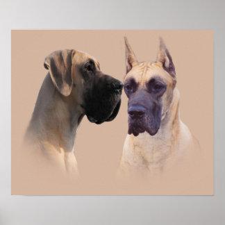 Rey de great dane de la impresión de los perros posters