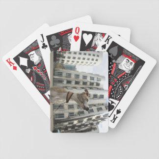Rey de la cubierta del póker de Düsseldorf Baraja Cartas De Poker