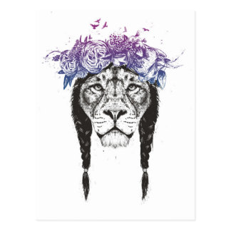 Rey de leones tarjeta postal