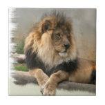 Rey de los amantes del león de la selva azulejos ceramicos