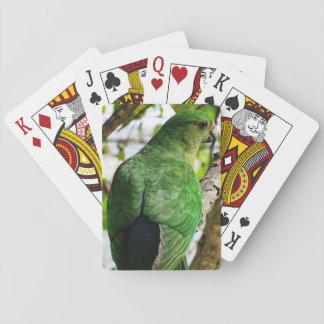 Rey de sexo femenino australiano Parrot Cartas De Póquer