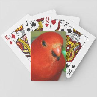 Rey de sexo masculino australiano Parrot Baraja De Póquer