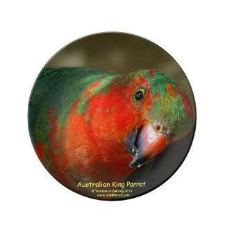 Rey de sexo masculino juvenil australiano Parrot Platos De Cerámica