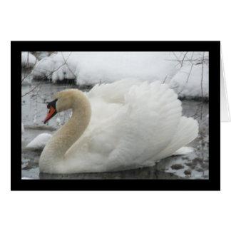 Rey del cisne tarjeta de felicitación
