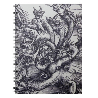 Rey del dragón que vomita libro de apuntes