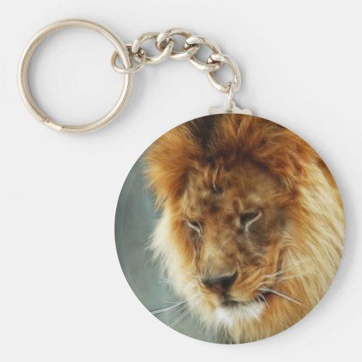Rey del león llavero
