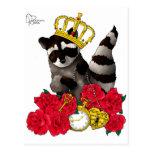 Rey del mapache tarjeta postal
