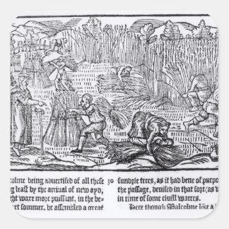 Rey Malcolm de Escocia Pegatina Cuadrada
