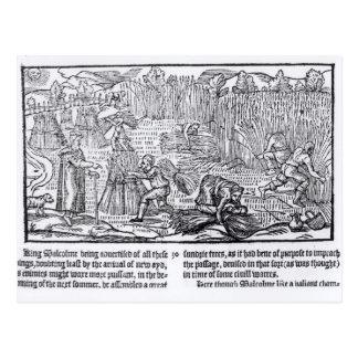 Rey Malcolm de Escocia Tarjetas Postales