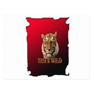 Rey Of The Jungle del tigre con el fondo Postales