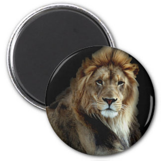 Rey orgulloso del reino animal imán redondo 5 cm