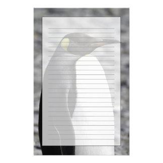 Rey pingüino, llano de Salisbury, Georgia del sur Papeleria Personalizada