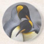 Rey pingüinos en práctico de costa del amor posavasos manualidades