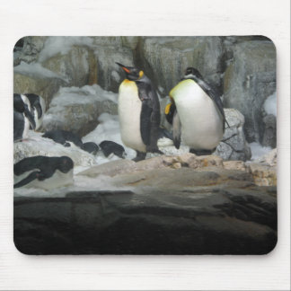 Rey pingüinos tapetes de raton