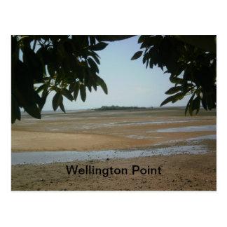 Rey punto de Island, Wellington Tarjetas Postales