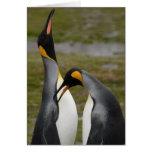 Rey que corteja pingüinos felicitacion