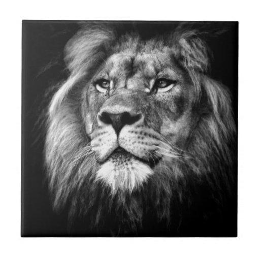 Rey real azulejos