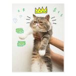 Rey rico Cat Postales